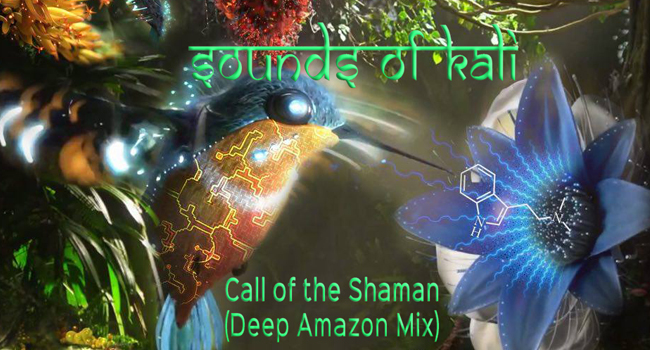 Call of the Shaman (Deep Amazon Mix)